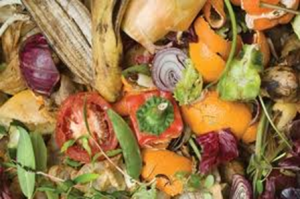 Vegetables that went through garbage disposal